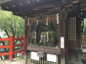 八大神社一条下り松の古木