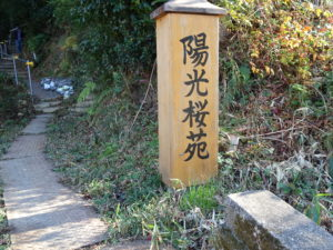 楊谷寺陽光桜苑