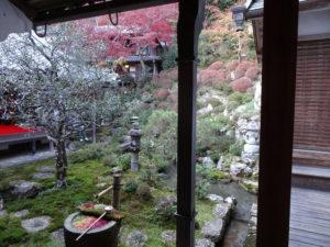 楊谷寺庭園1