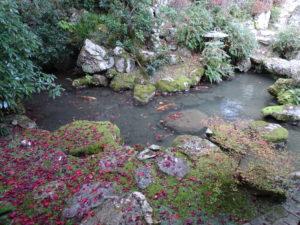 楊谷寺庭園4