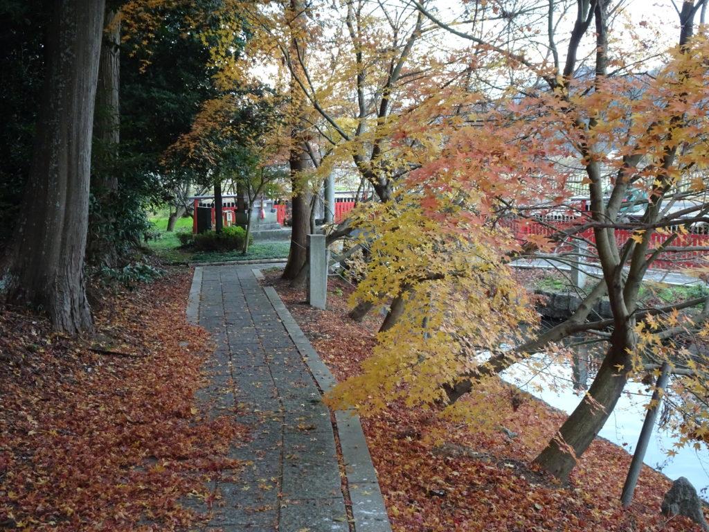 薭田野神社紅葉3