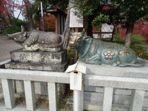 長岡天満宮牛の像2