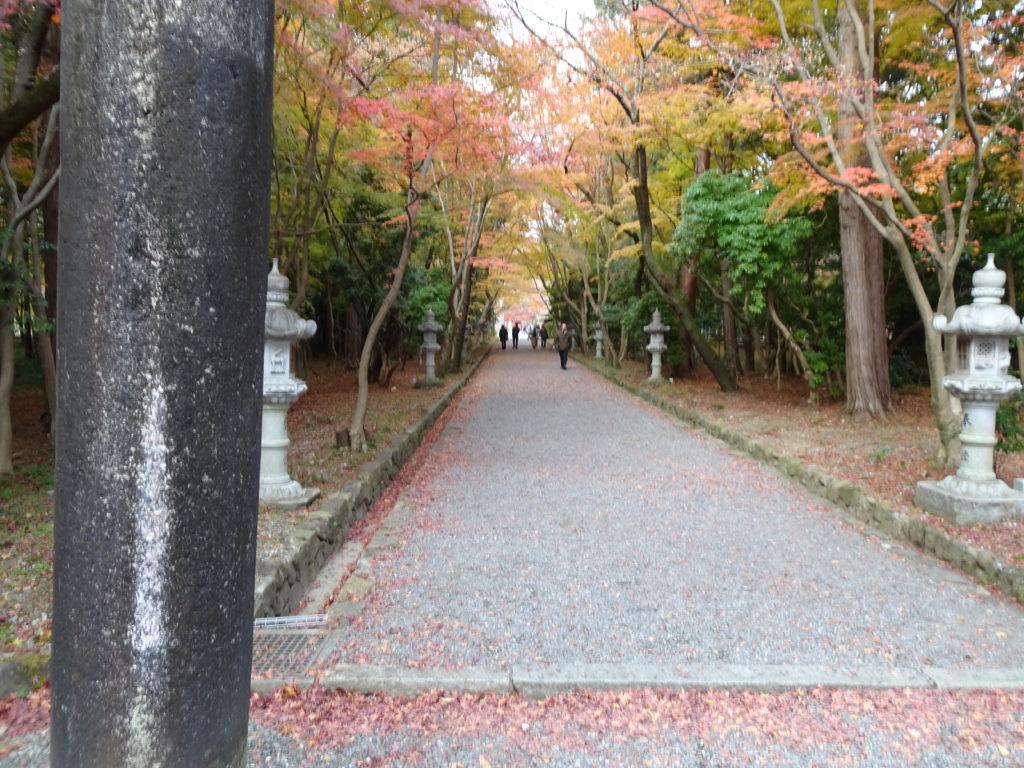 大原野神社参道