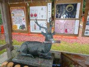 大原野神社手水舎鹿