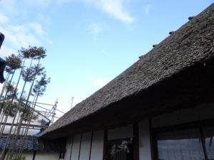 走田神社社務所かやぶき屋根