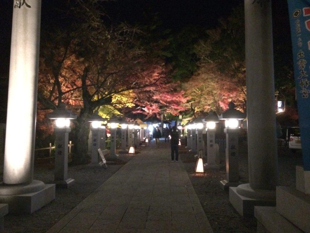 出雲大神宮紅葉夜間ライトアップ1