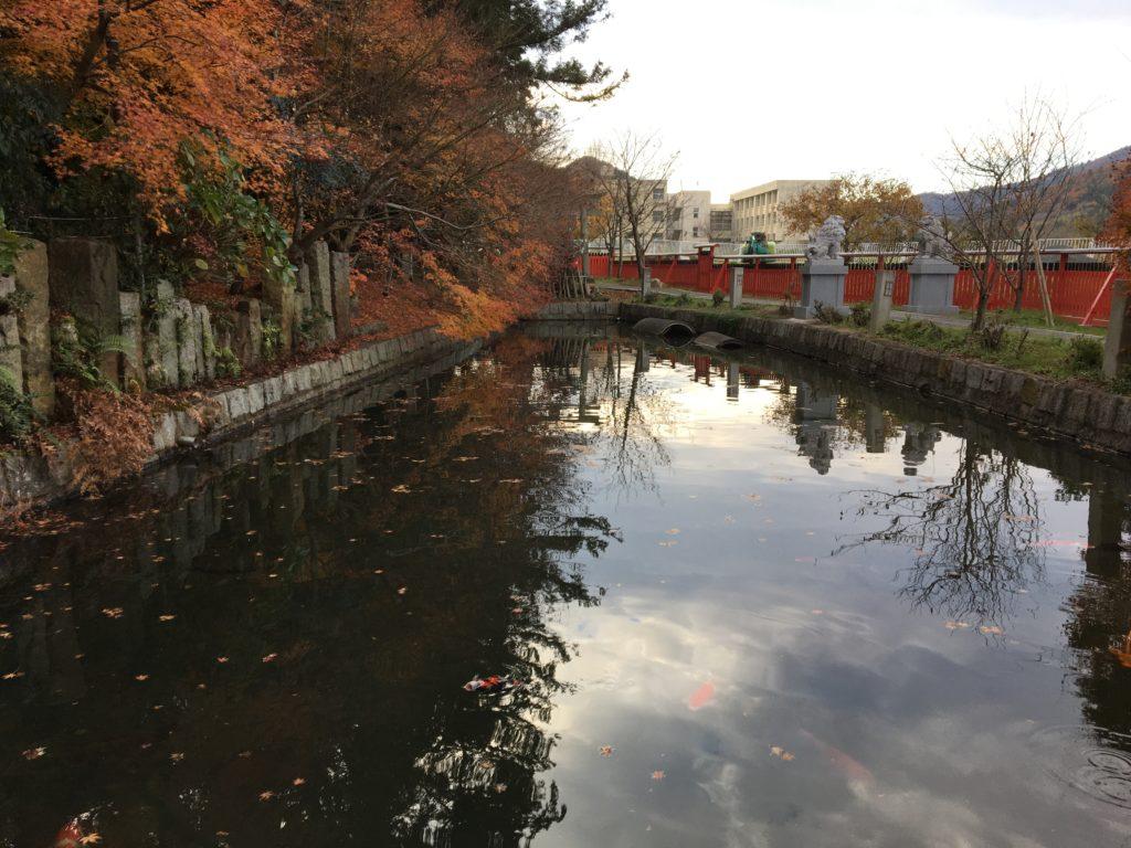 和銅禊の池1
