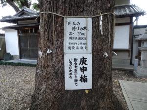 猿田彦神社庚申楠2